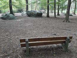 Zyklopensteine im Aachener Wald